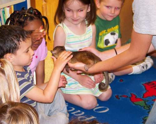 educational exotic animal show kids