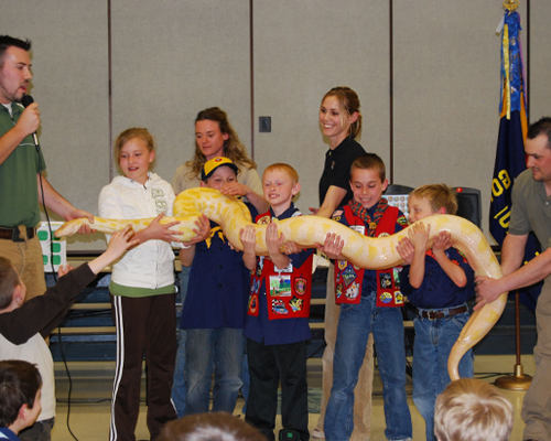 educational exotic animal show python